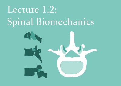 1.2 Spinal Biomechanics