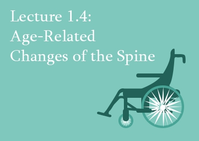 1.4 Age-Related Changes of the Spine