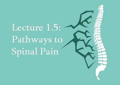 1.5 Pathways to Spinal Pain