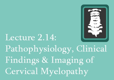 2.14 Pathophysiology, Clinical Findings & Imaging of Cervical Myelopathy