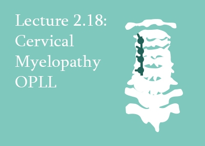 2.18 Cervical Myelopathy: Ossified Posterior Longitudinal Ligament (OPLL)