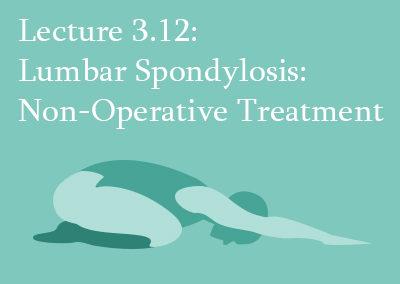 3.12 Non-Operative Treatment of Lumbar Spondylosis