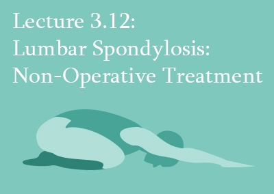 3.12 Non-Operative Treatment of Lumbar Spondylosis