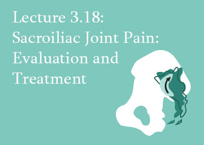 3.18 Sacroiliac Joint Pain: Evaluation and Treatment