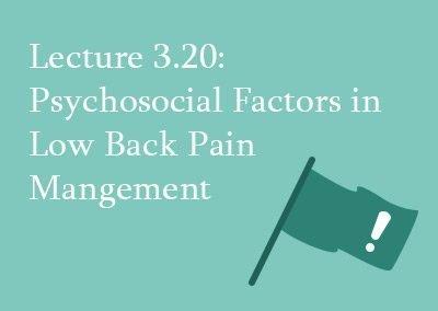 3.20 Psychosocial factors in low back pain management