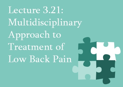 3.21 Multidisciplinary Approaches to Treatment of Low Back Pain