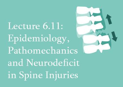 6.11 Epidemiology, Pathomechanics and Neurodeficit in Spine Injuries