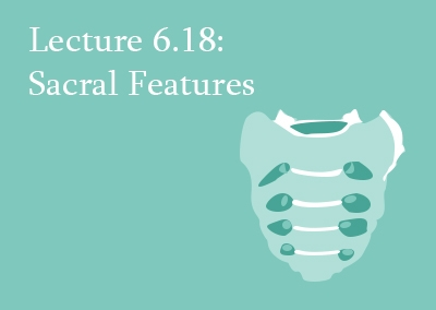 6.18 Sacral Fractures