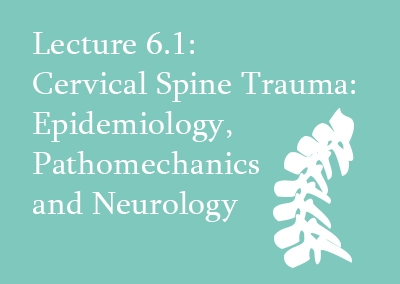 6.1 Cervical Spine Trauma: Epidemiology, Pathomechanics and Neurology
