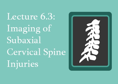 6.3 Imaging of Subaxial Cervical Spine Injuries