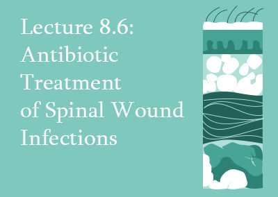 8.6 Antibiotic Treatment of Spinal Wound Infections