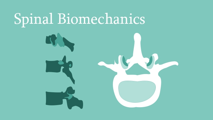 Spinal Biomechanics - Spine Surgery Lecture - eccElearning