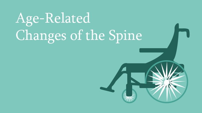 Age-related changes of the spine lecture thumbnail