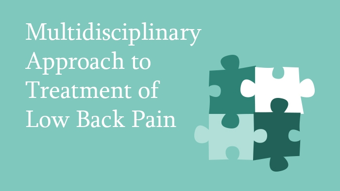 Treatment of low back pain lecture thumbnail