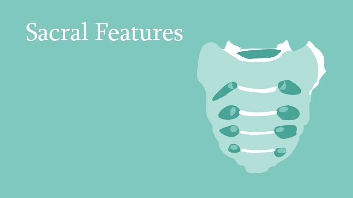 Sacral Fractures - Spine Surgery Lecture - Thumbnail