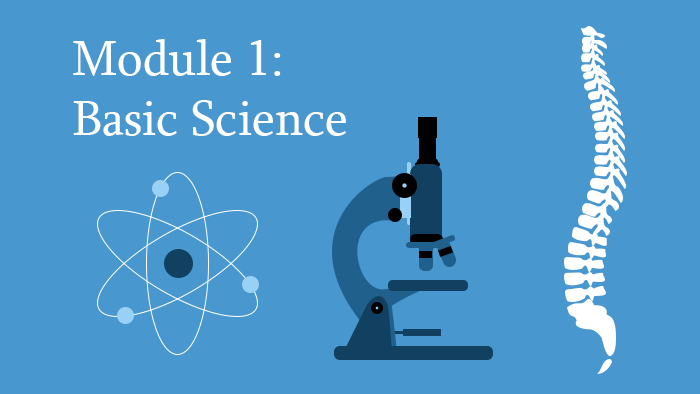 Module 1: Basic Science of the Spine