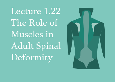 1.22 The Role of Muscles in Adult Spinal Deformity